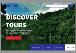 Travel portal website   What is Travel portal website? -MaMITs